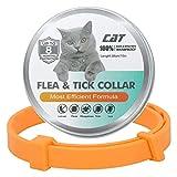 ZITFRI Collar Antiparasitos Gato 62cm Ajustable, Collares Antiparasitarios para Gatos contra Pulgas Garrapatas Mosquitos, Bonito Color Naranja, Collar...