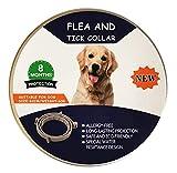 Collar antiparasitario para Perro, Collar antipulgas y antigarrapatas para Perro y Gatos, Producto Natural (M-64cm)